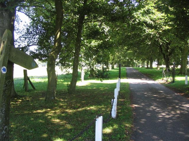 Bridleway to Ashmore
