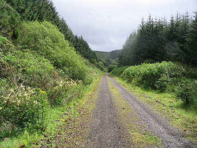 The former Waverley Railway Line