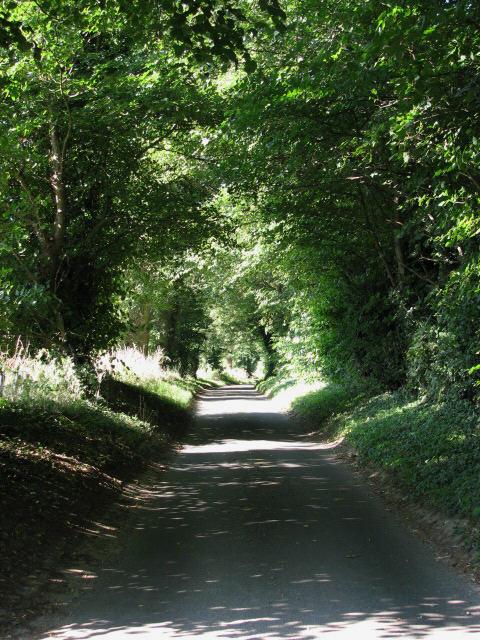 Pound Lane