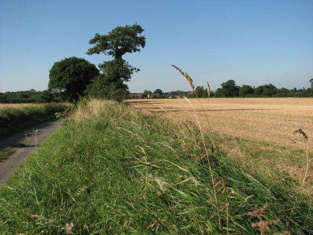 Road from Old Farm to Anchor Street