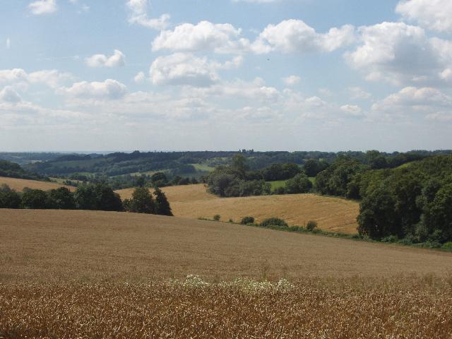 Fields near Loudwater