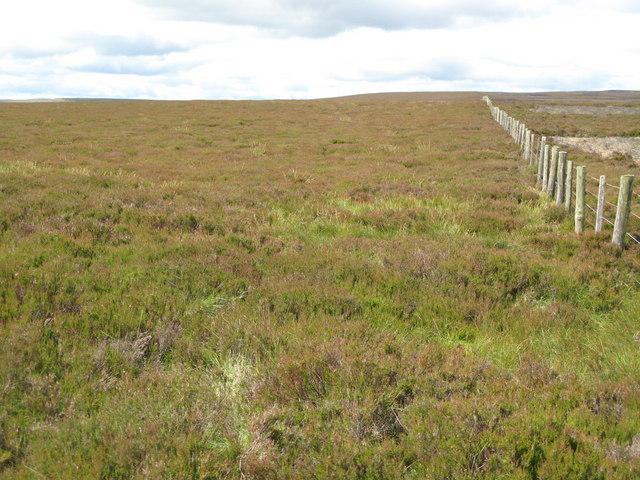 Moorland near Cuthbert's Hill