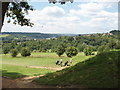 SU9091 : Golf course, view to High Wycombe by David Hawgood