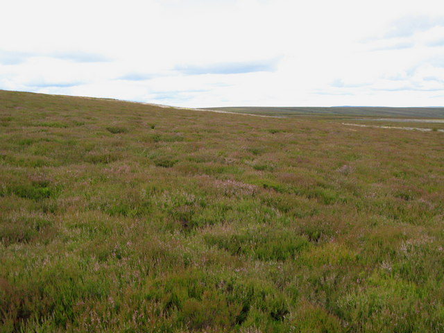 Moorland near Hill 561 (2)