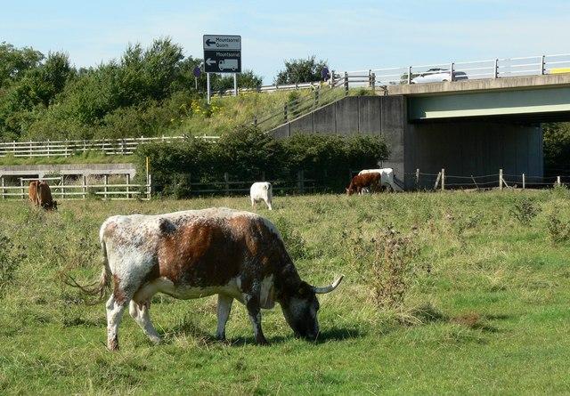 A6 Canal Bridge