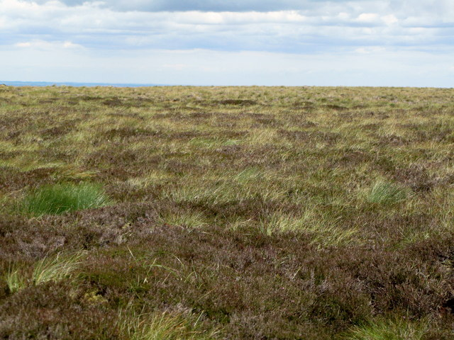 Quite interesting moorland near Black Hags