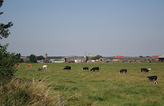 Highwood Farm