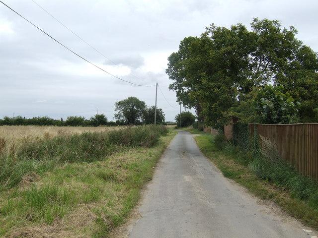 Wynnes Lane by River Farm, Clenchwarton