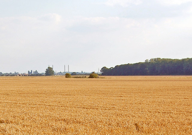 Looking across Elsham Carrs towards Brigg