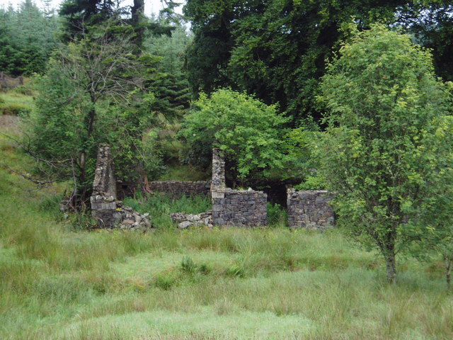 The ruins of Laggan Lodge, Halfmark Forest.