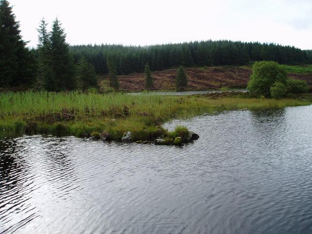 Loch Skae, Halfmark Forest.