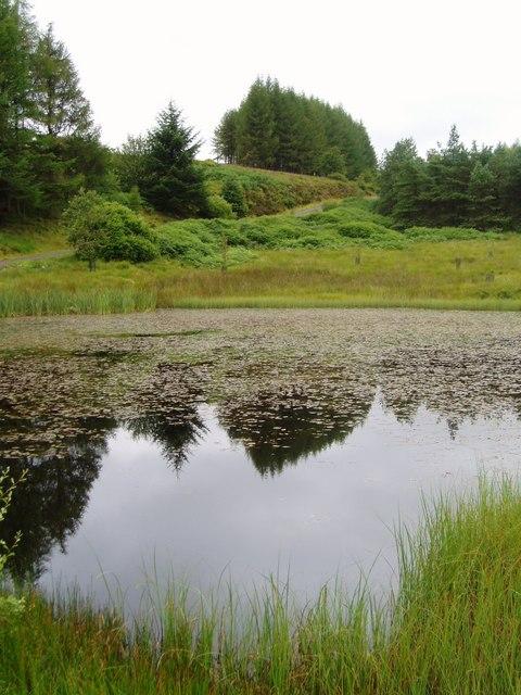Lochan near Margree.