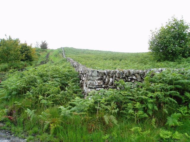Dyke corner near Hog Hill.