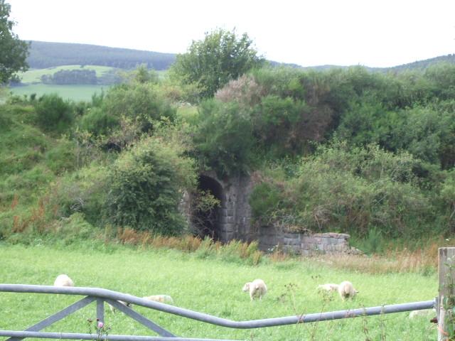 Culvert under old Deeside railway