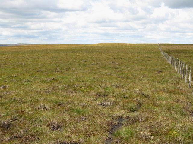Moorland above Redburn Edge
