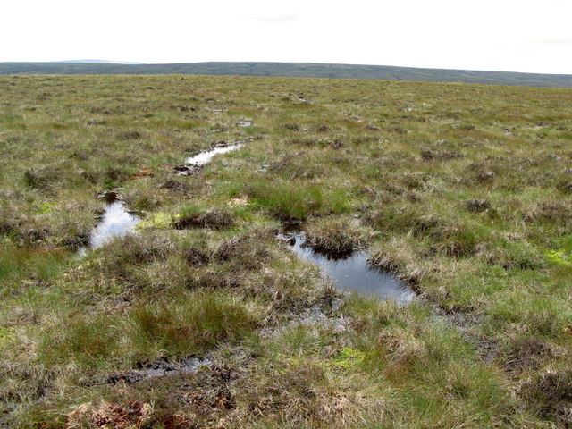 Slightly damp moorland above Redburn Edge