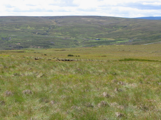Moorland above Rookhope Head (2)