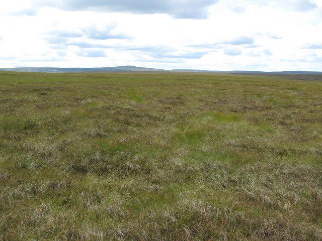 Quickcleugh Moss (2)