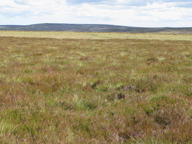 Moorland on Nookton Edge