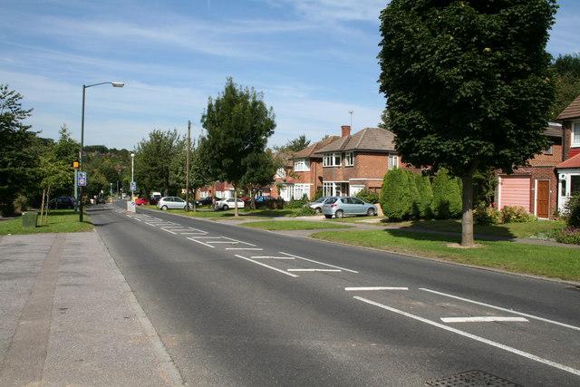 Mitchley Avenue, Sanderstead (2)