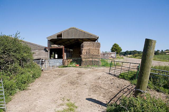 Footpath through Widley Farm