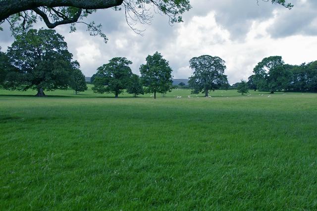 Farmland by Leagram Hall