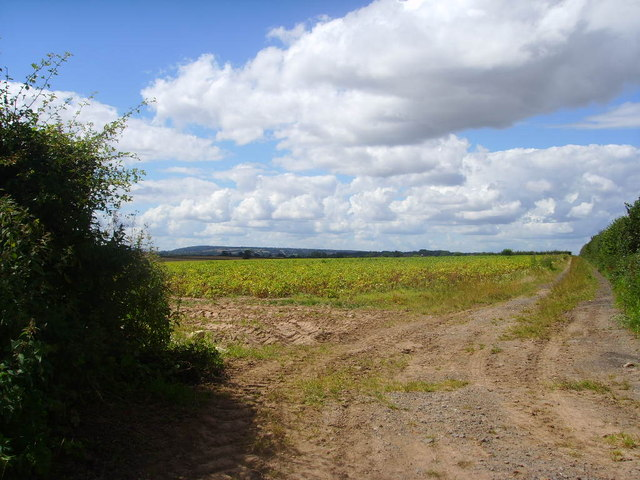 Farm land near Tern Farm