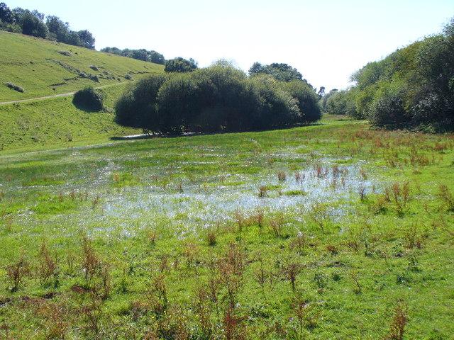 Wet, West of Cock Marsh