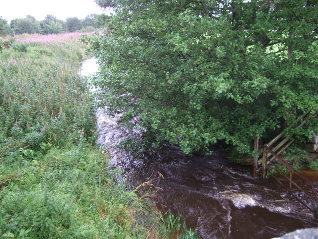 Downstream Beltie Burn