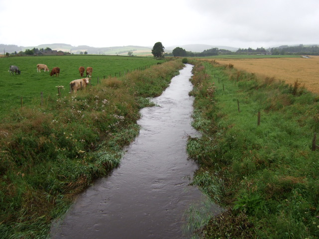 Upstream Beltie Burn