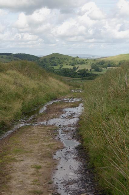 Track leading to Lickhurst Farm