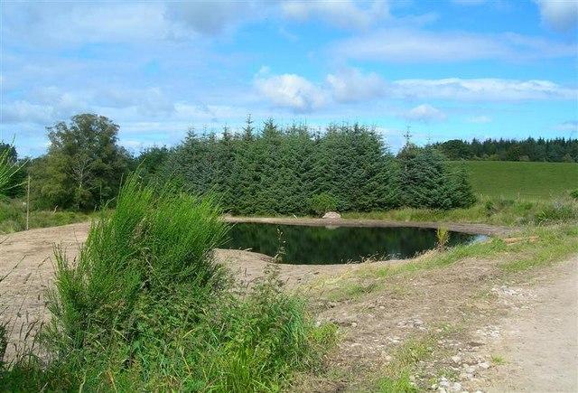New Pond at Burntack