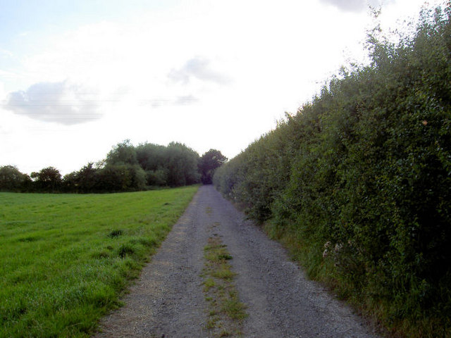 Lane to Tyers Hall.