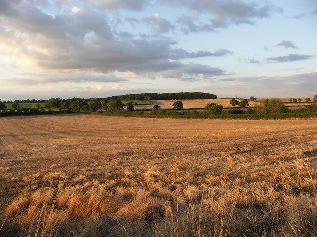 Naseby Battle Field.