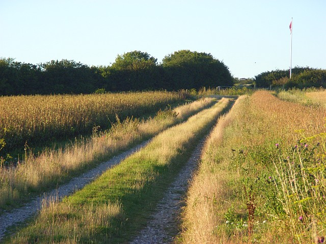 Track on Easton Down