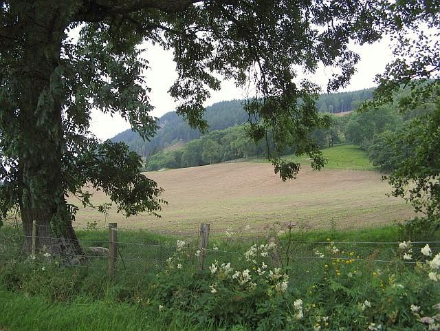 Farmland near Moulinearn