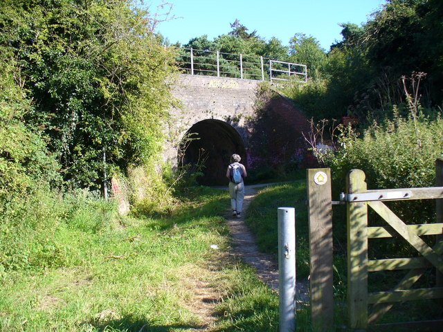 Railway Bridge, Cock Marsh