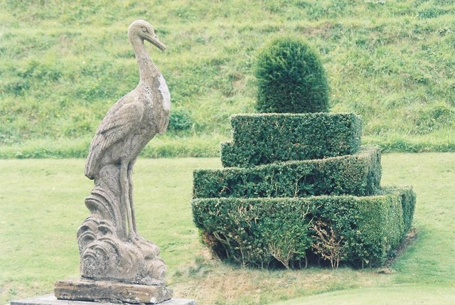 Mapperton Gardens: ornament and topiary