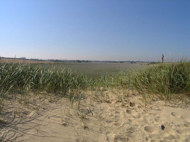 Reed beds from sea defences
