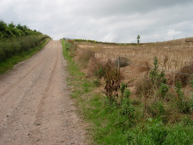 St Cuthbert's Way rerouted section