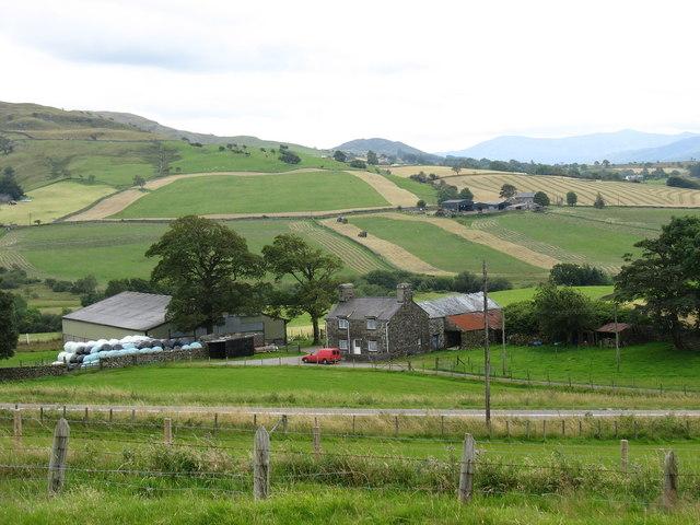 Ty'n-y-griafolen and Ty'n-y-carneddau farms