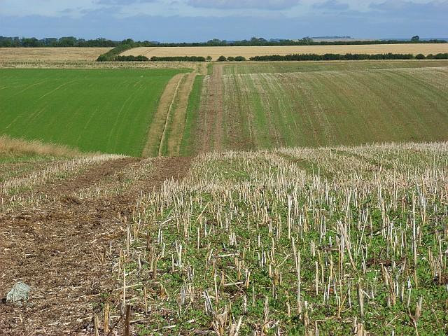 Farmland, Broughton