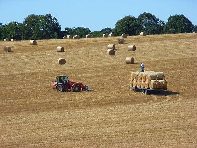 After the harvest, East Tytherley