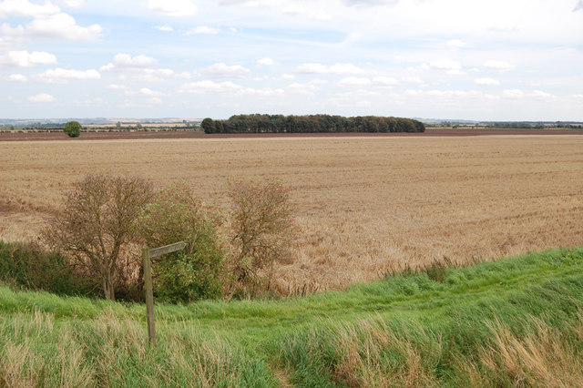 Looking southeast from Cadney Bridge