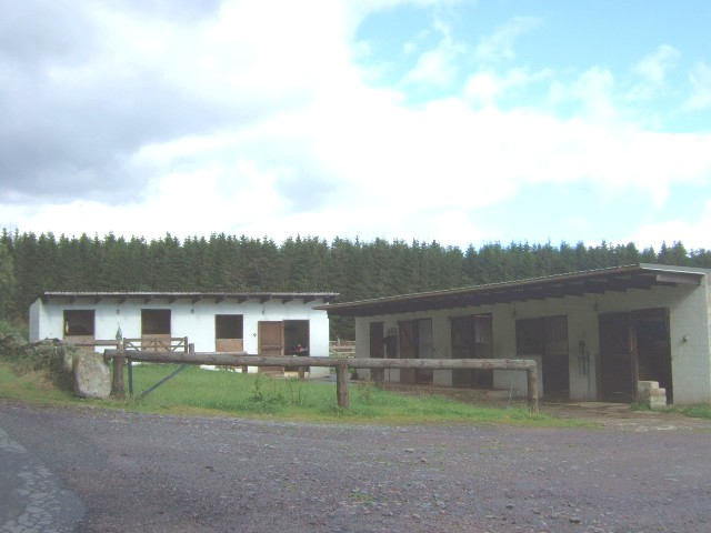 Horse stalls at Glencommon stables