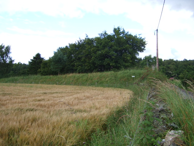 Embankment on old Deeside Railway