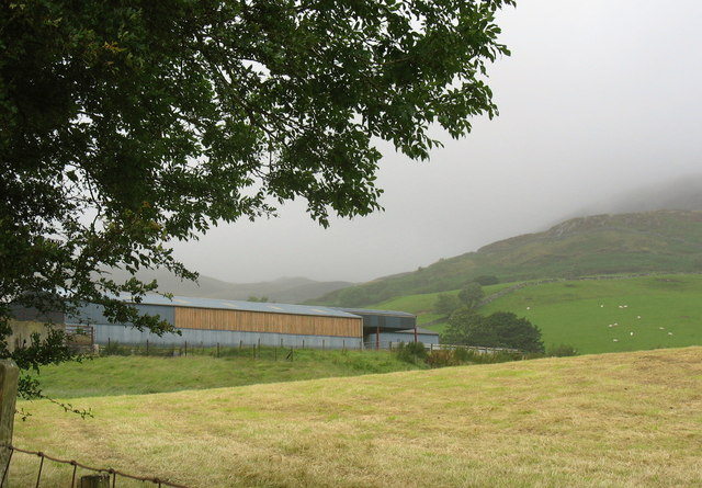 Hay meadow and cattle and sheep sheds at Bryn-celynog
