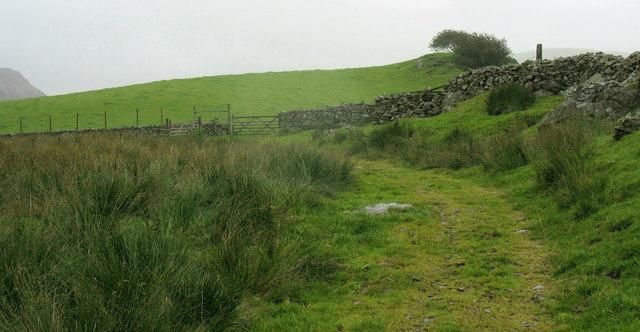 The path from Llyn Hiraethlyn