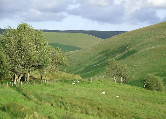 Elenydd Landscape, Cwm Doethie Fawr, Ceredigion