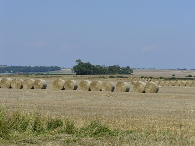 Arable field off the Hull to Bridlington road A 165